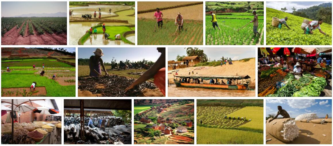 Madagascar Industry and Service Sector